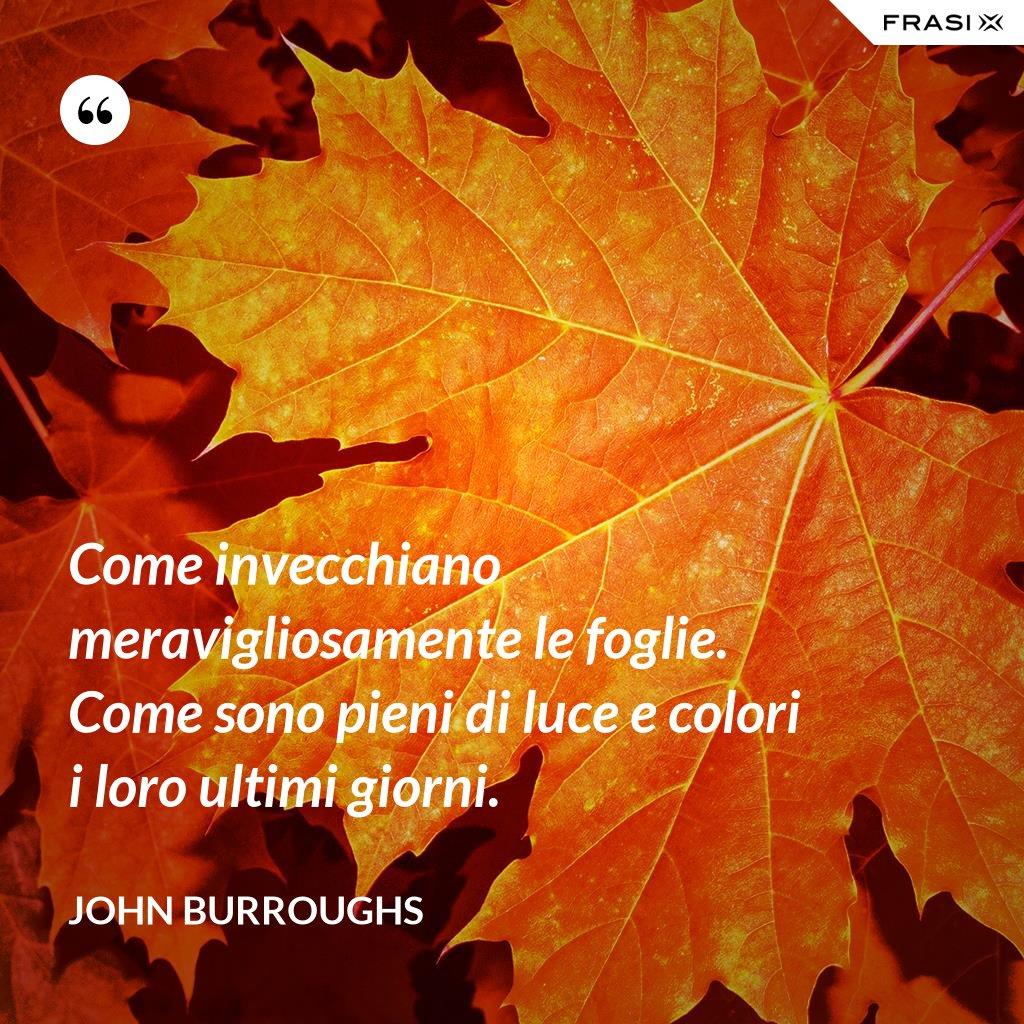 Come invecchiano meravigliosamente le foglie. Come sono pieni di luce e colori i loro ultimi giorni. - John Burroughs