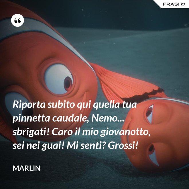 Riporta subito qui quella tua pinnetta caudale, Nemo... sbrigati! Caro il mio giovanotto, sei nei guai! Mi senti? Grossi! - Marlin