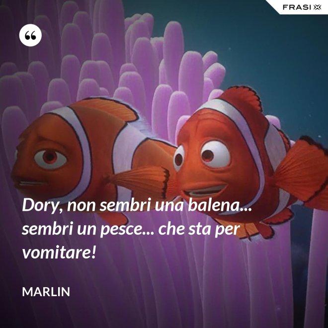 Dory, non sembri una balena... sembri un pesce... che sta per vomitare! - Marlin