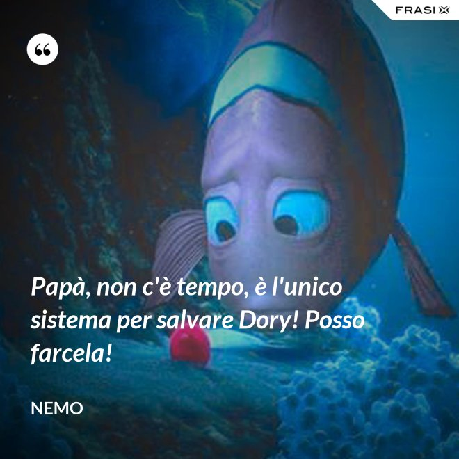 Papà, non c'è tempo, è l'unico sistema per salvare Dory! Posso farcela! - Nemo