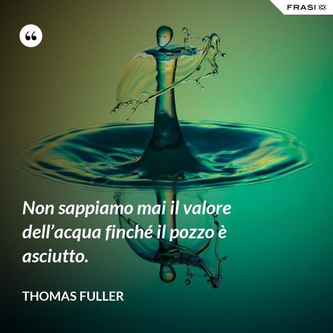 Non sappiamo mai il valore dell'acqua finché il pozzo è asciutto. - Thomas Fuller