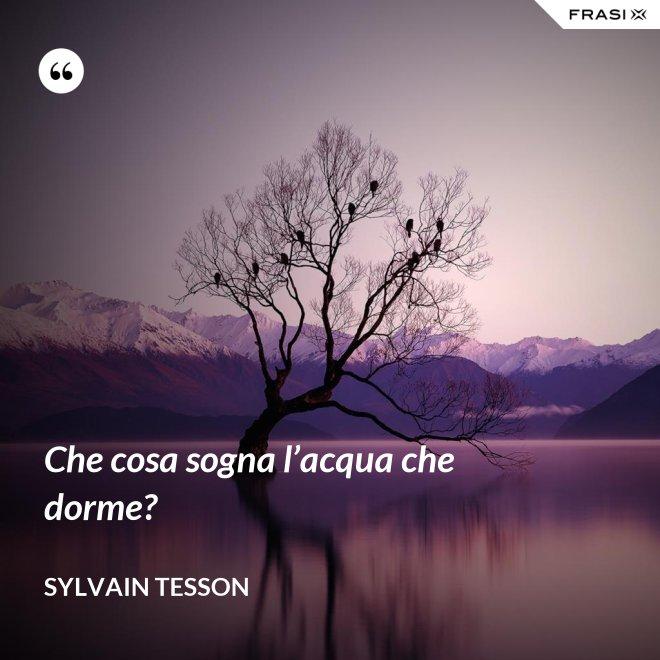 Che cosa sogna l'acqua che dorme? - Sylvain Tesson