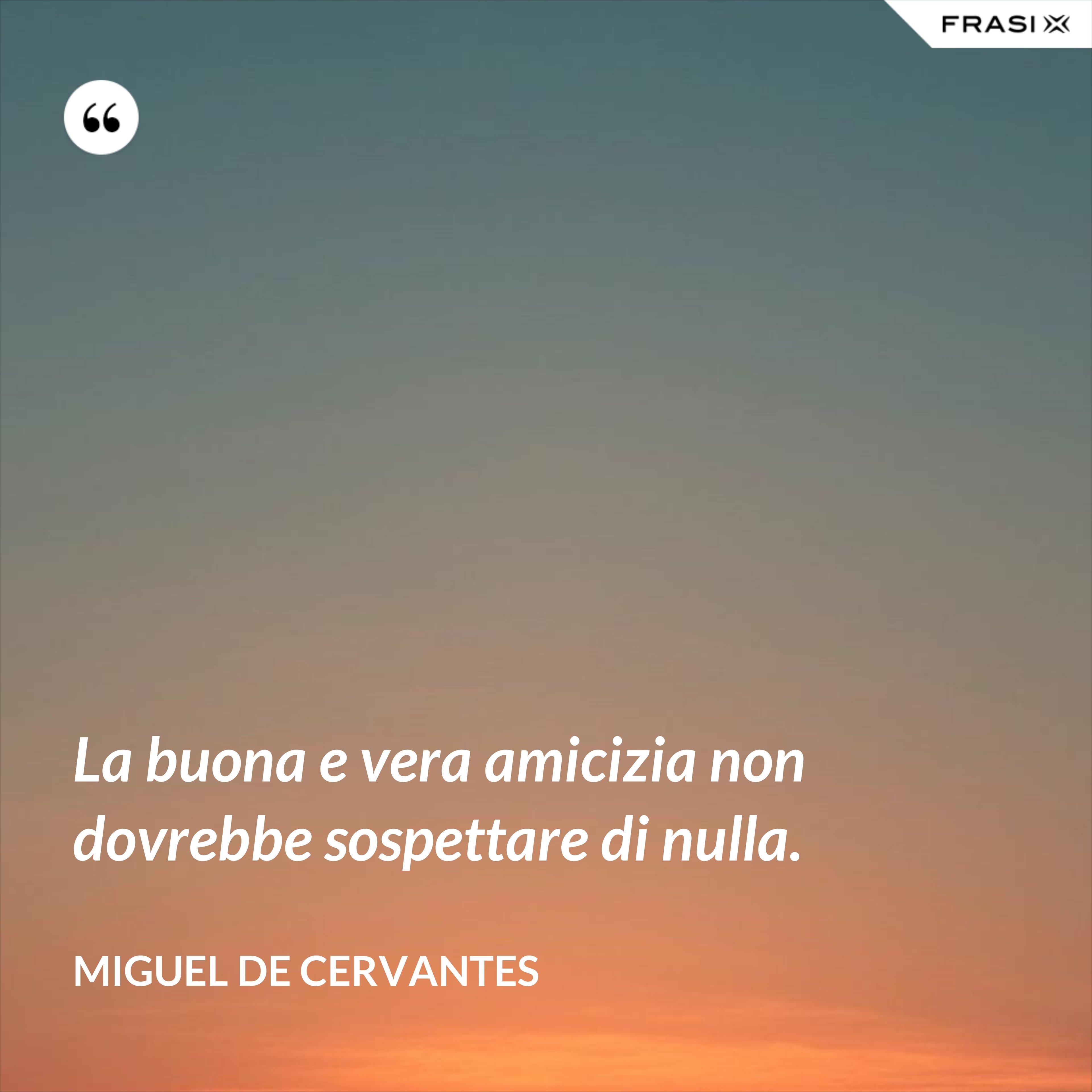 La buona e vera amicizia non dovrebbe sospettare di nulla. - Miguel de Cervantes