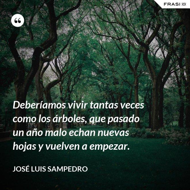 Deberíamos vivir tantas veces como los árboles, que pasado un año malo echan nuevas hojas y vuelven a empezar. - José Luis Sampedro