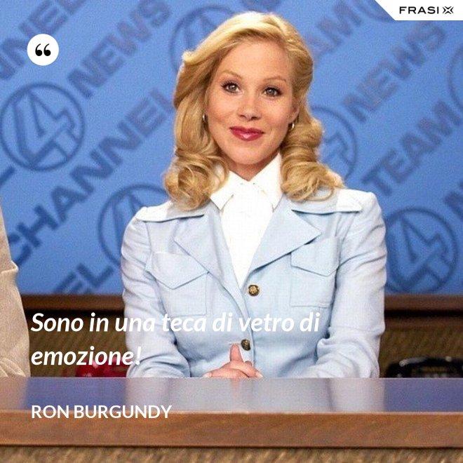 Sono in una teca di vetro di emozione! - Ron Burgundy