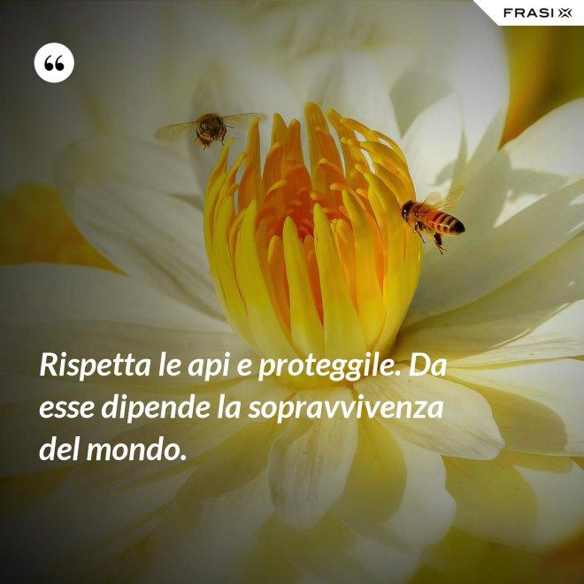 Rispetta le api e proteggile. Da esse dipende la sopravvivenza del mondo. - Anonimo