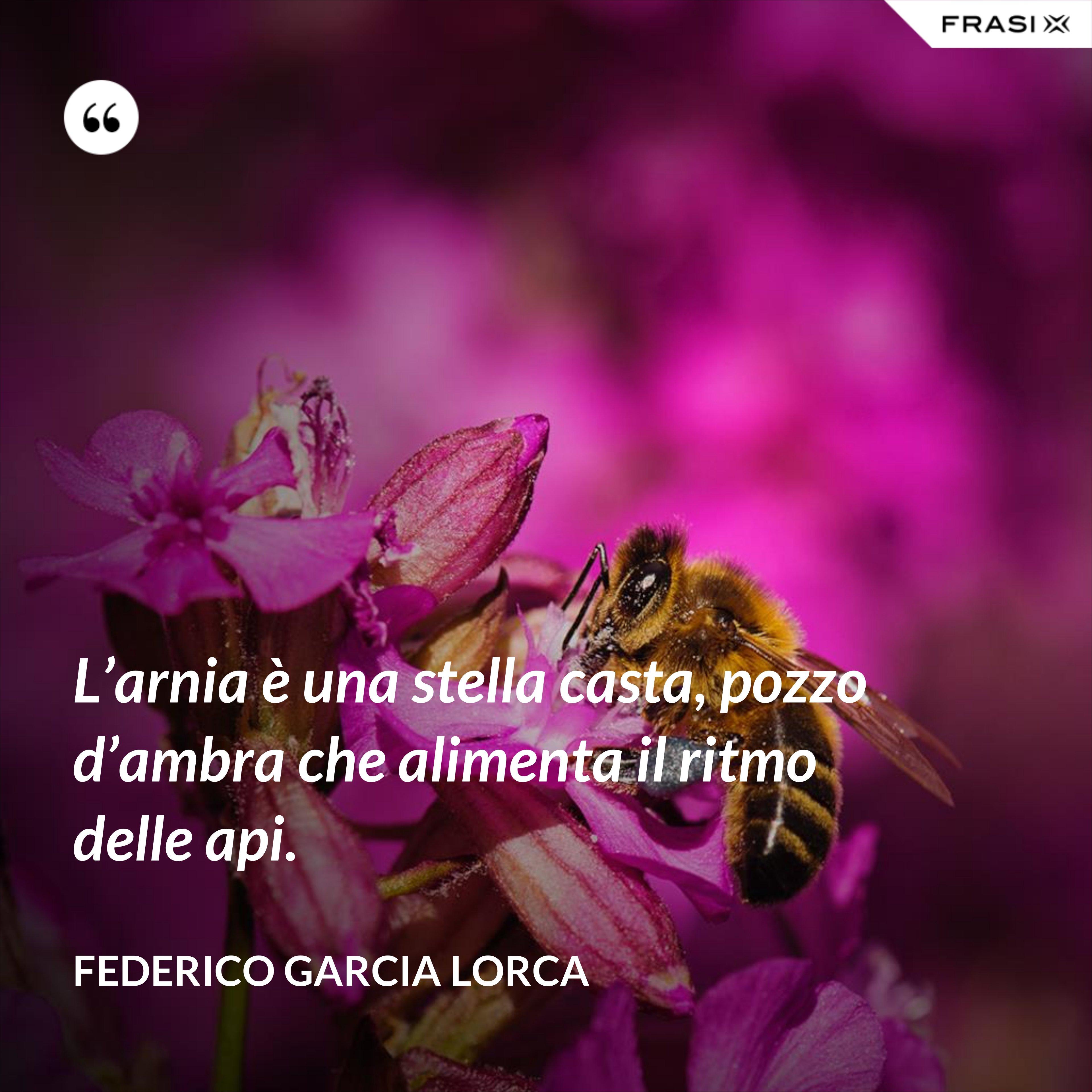L'arnia è una stella casta, pozzo d'ambra che alimenta il ritmo delle api. - Federico Garcia Lorca