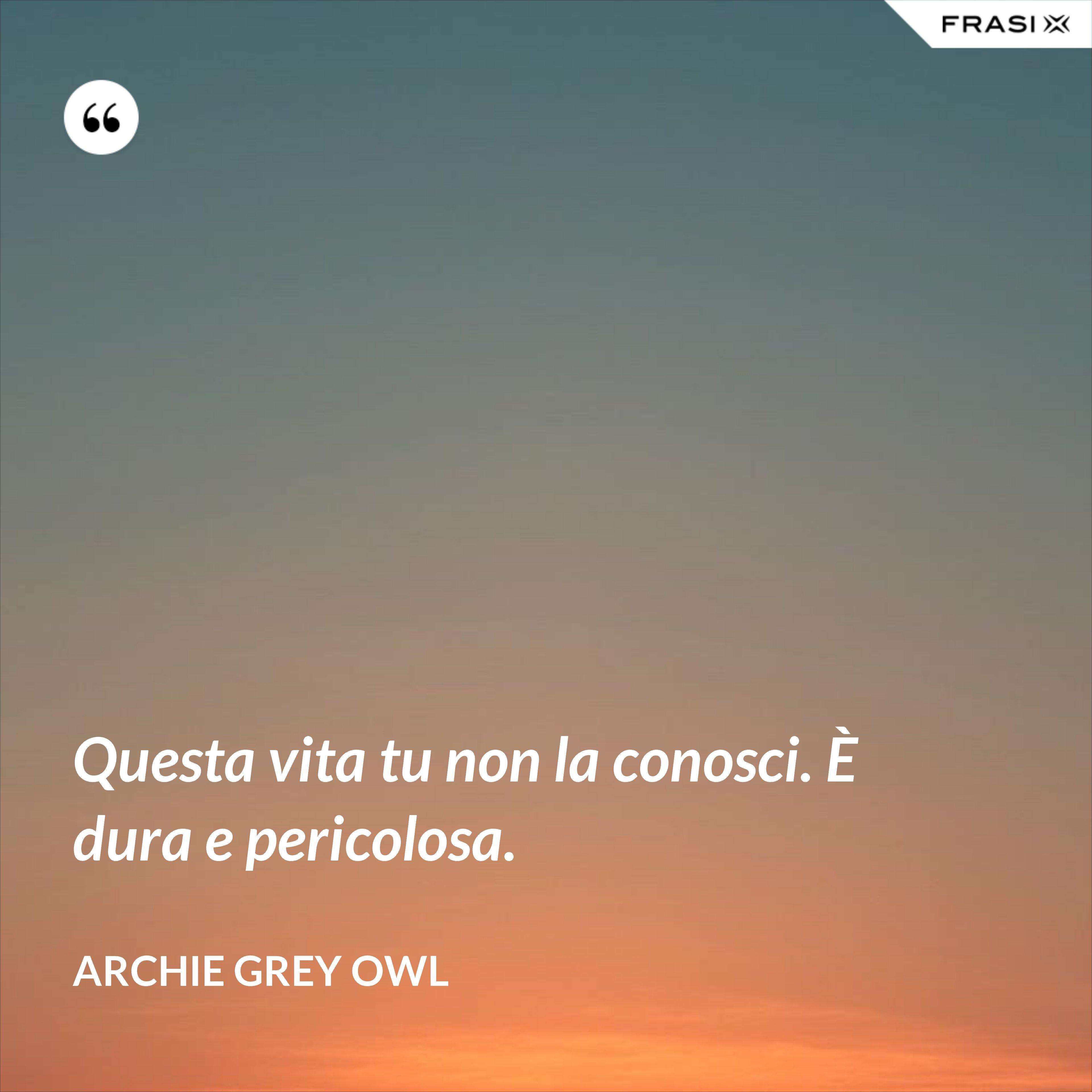 Questa vita tu non la conosci. È dura e pericolosa. - Archie Grey Owl