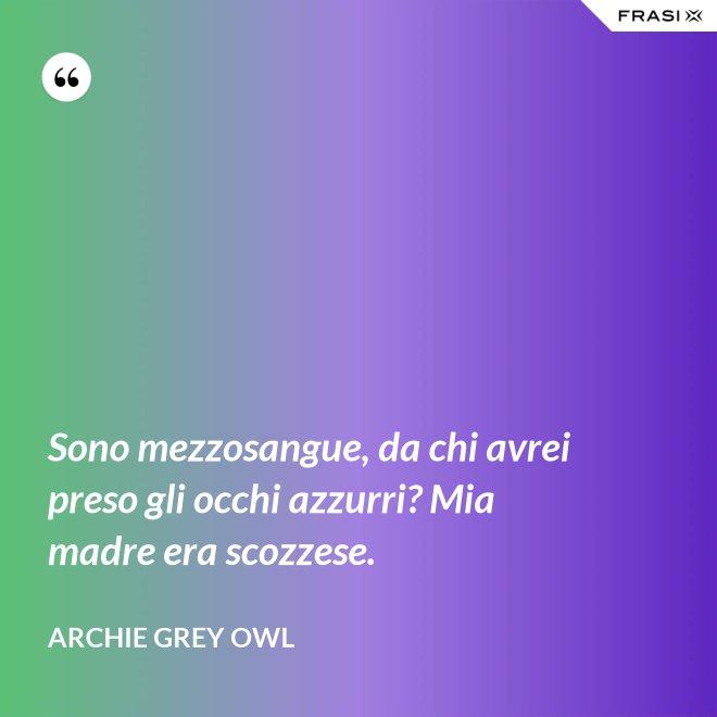 Sono mezzosangue, da chi avrei preso gli occhi azzurri? Mia madre era scozzese. - Archie Grey Owl
