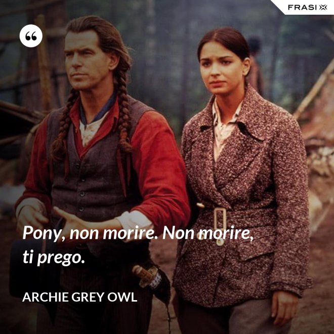 Pony, non morire. Non morire, ti prego. - Archie Grey Owl