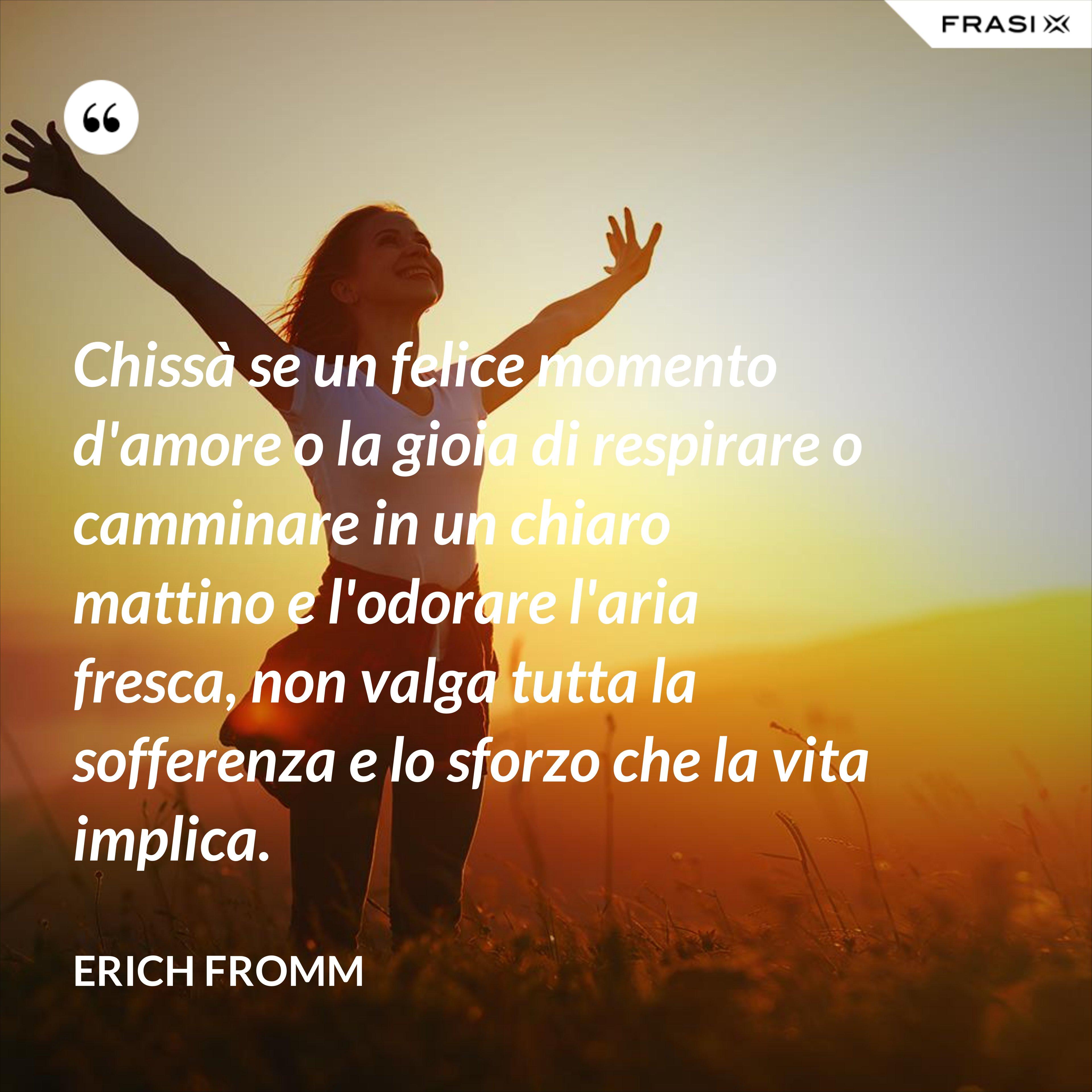Chissà se un felice momento d'amore o la gioia di respirare o camminare in un chiaro mattino e l'odorare l'aria fresca, non valga tutta la sofferenza e lo sforzo che la vita implica. - Erich Fromm