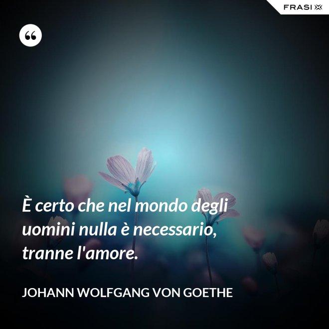 È certo che nel mondo degli uomini nulla è necessario, tranne l'amore. - Johann Wolfgang von Goethe