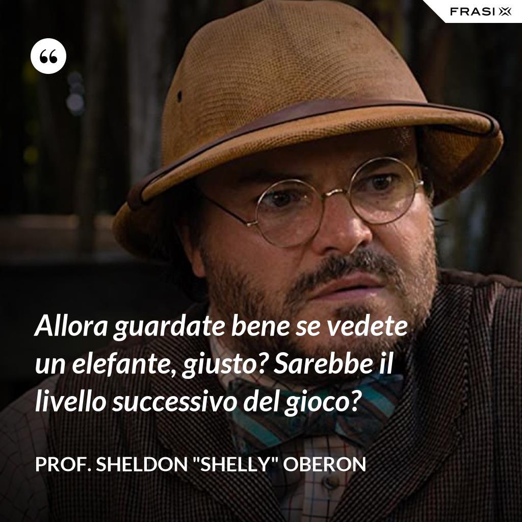 """Allora guardate bene se vedete un elefante, giusto? Sarebbe il livello successivo del gioco? - prof. Sheldon """"Shelly"""" Oberon"""