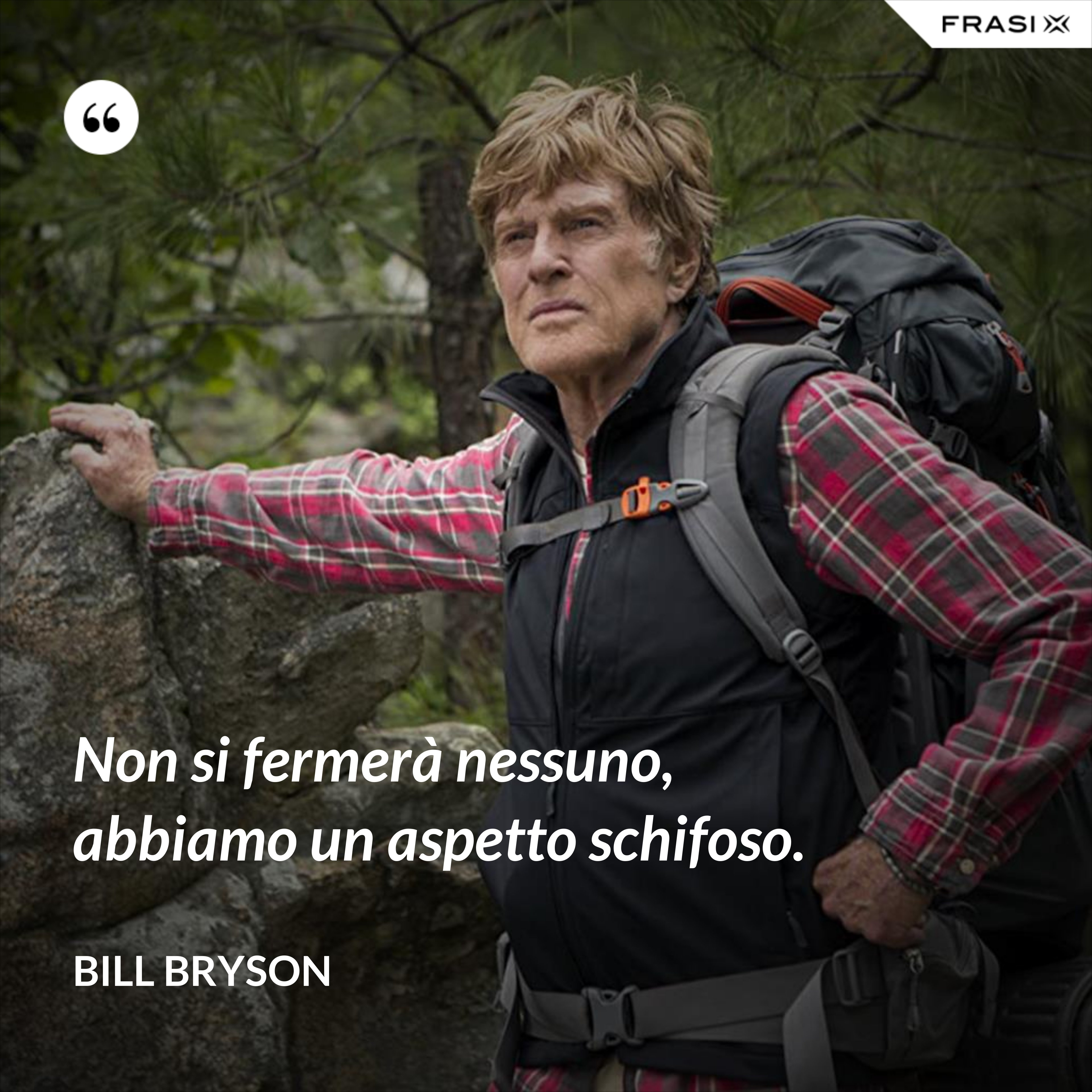 Non si fermerà nessuno, abbiamo un aspetto schifoso. - Bill Bryson