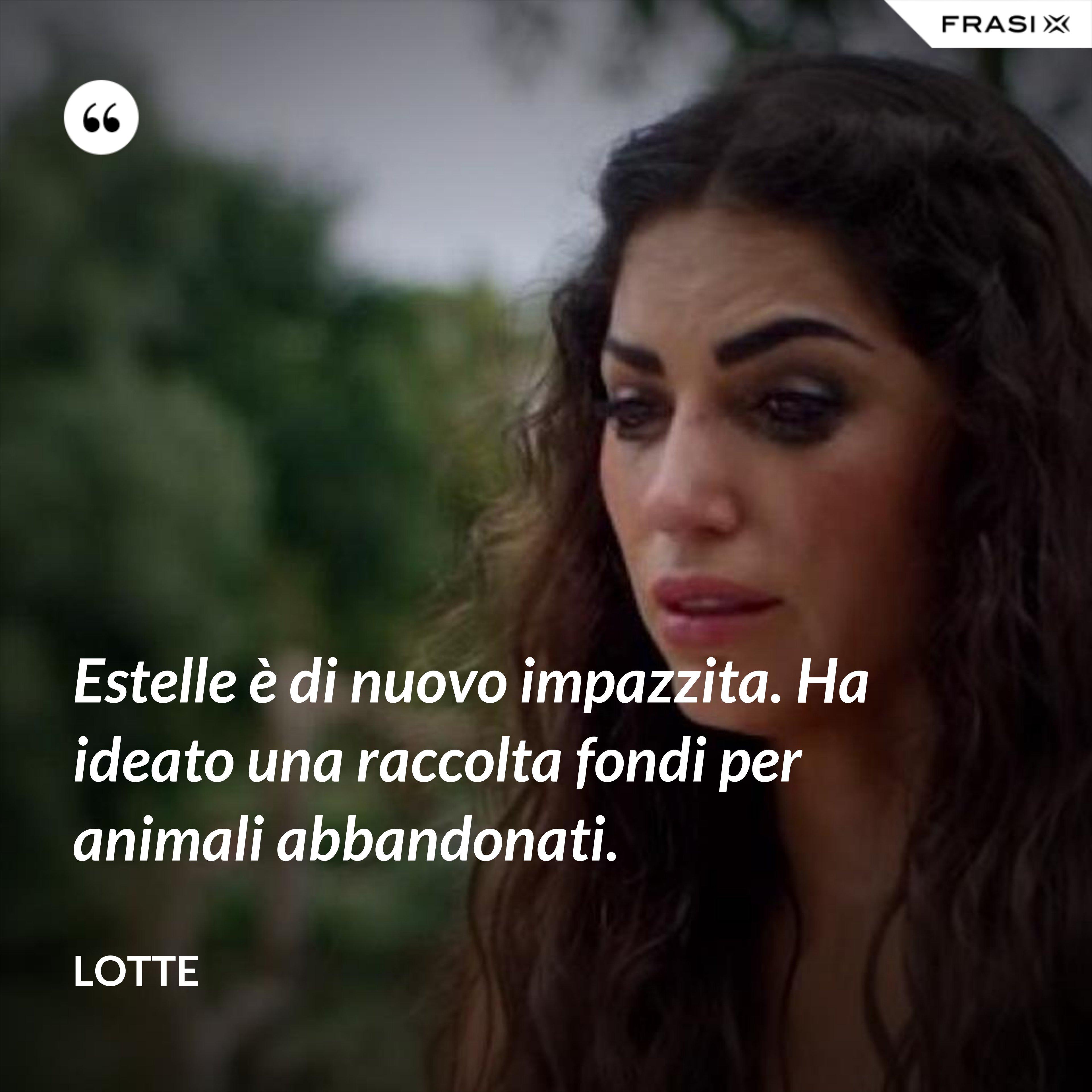 Estelle è di nuovo impazzita. Ha ideato una raccolta fondi per animali abbandonati. - Lotte