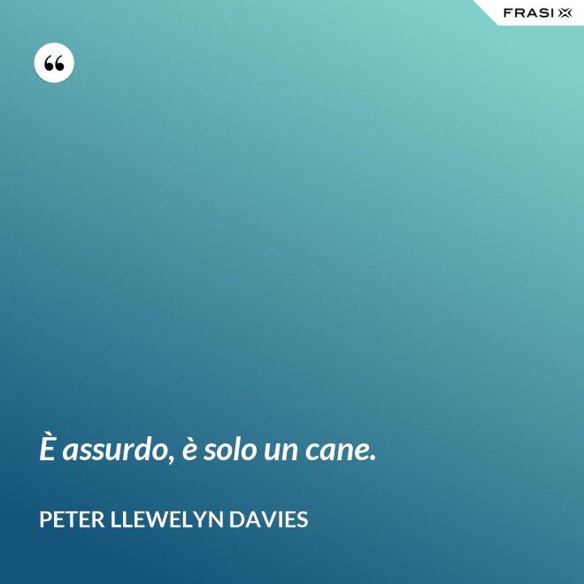 È assurdo, è solo un cane. - Peter Llewelyn Davies