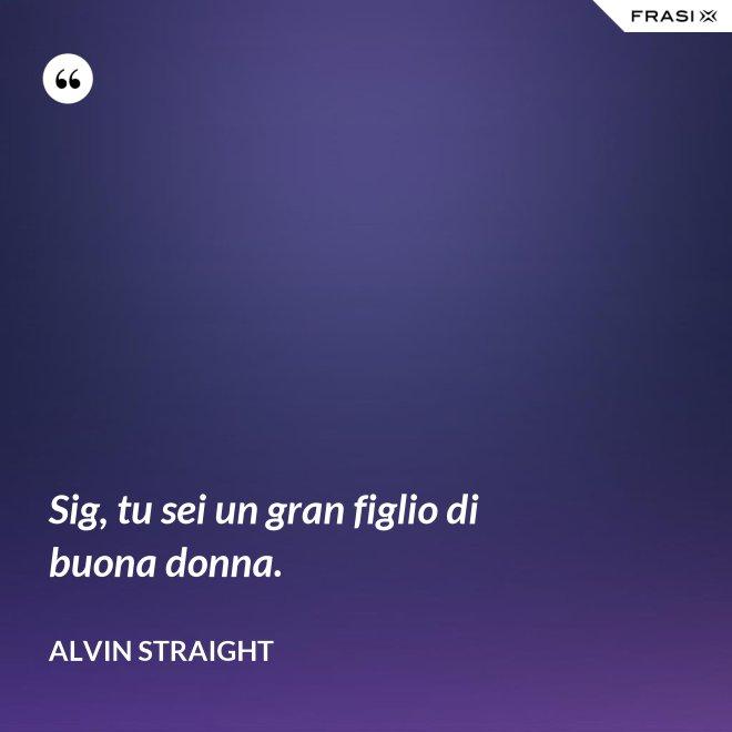 Sig, tu sei un gran figlio di buona donna. - Alvin Straight