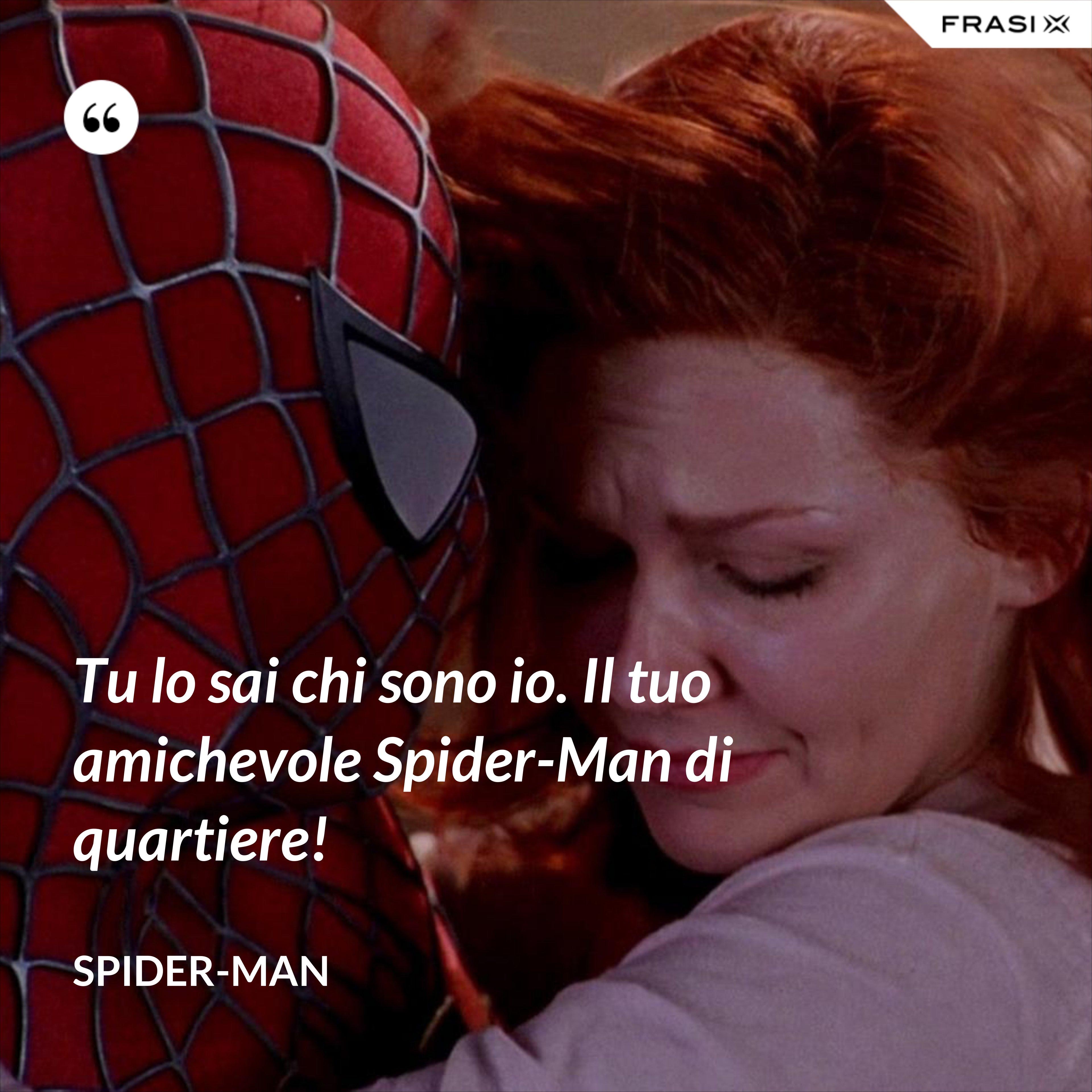 Tu lo sai chi sono io. Il tuo amichevole Spider-Man di quartiere! - Spider-Man