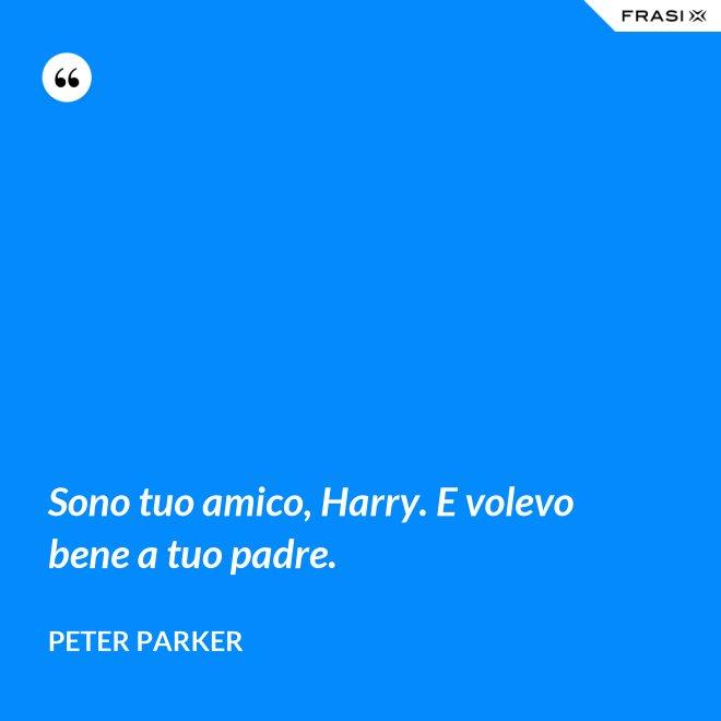 Sono tuo amico, Harry. E volevo bene a tuo padre. - Peter Parker