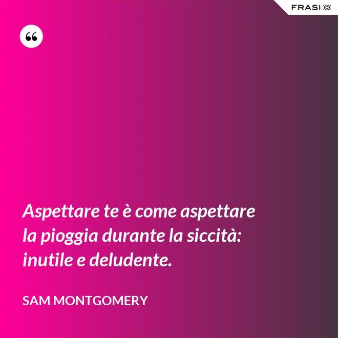 Aspettare te è come aspettare la pioggia durante la siccità: inutile e deludente. - Sam Montgomery