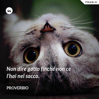 Non dire gatto finché non ce l'hai nel sacco. - Proverbio