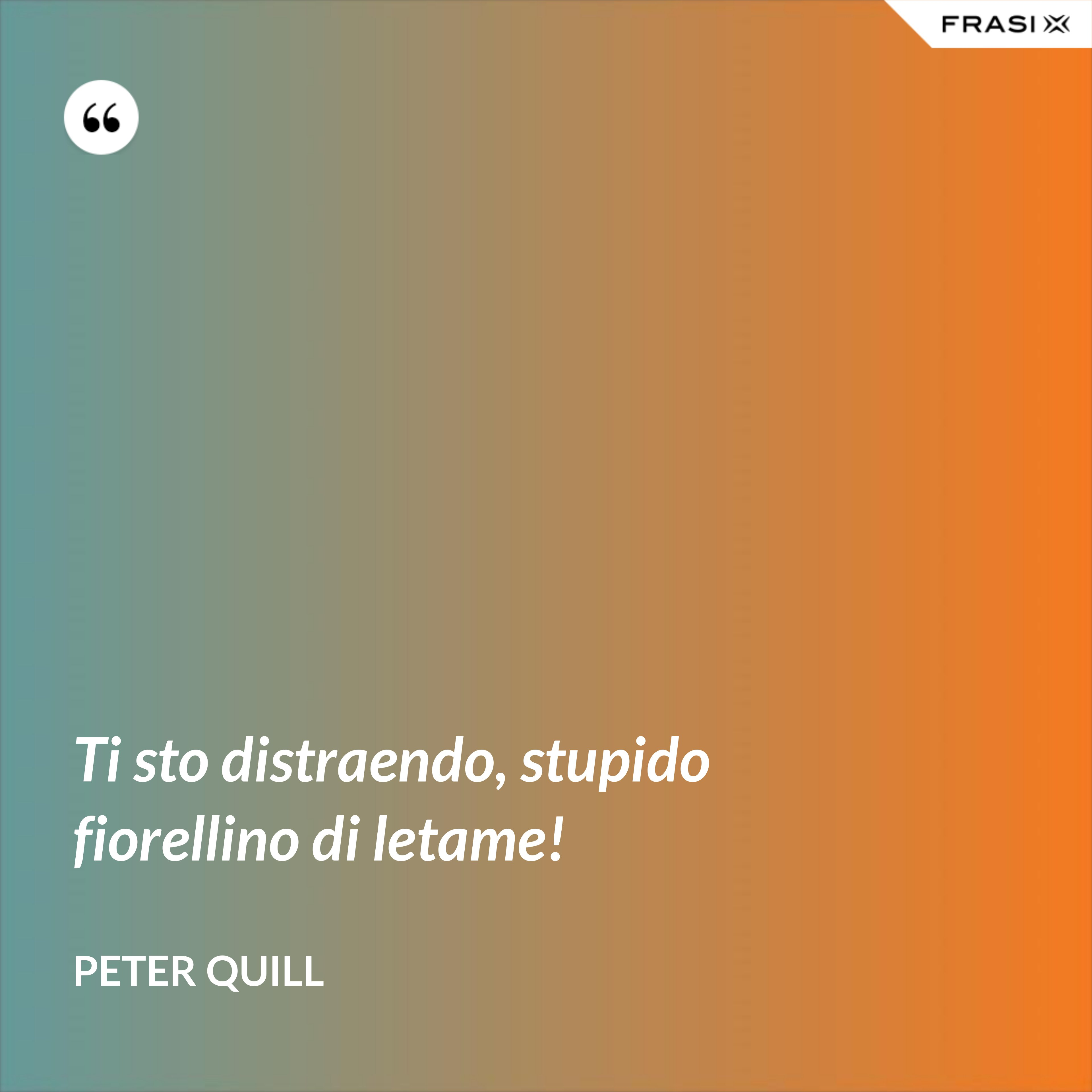 Ti sto distraendo, stupido fiorellino di letame! - Peter Quill
