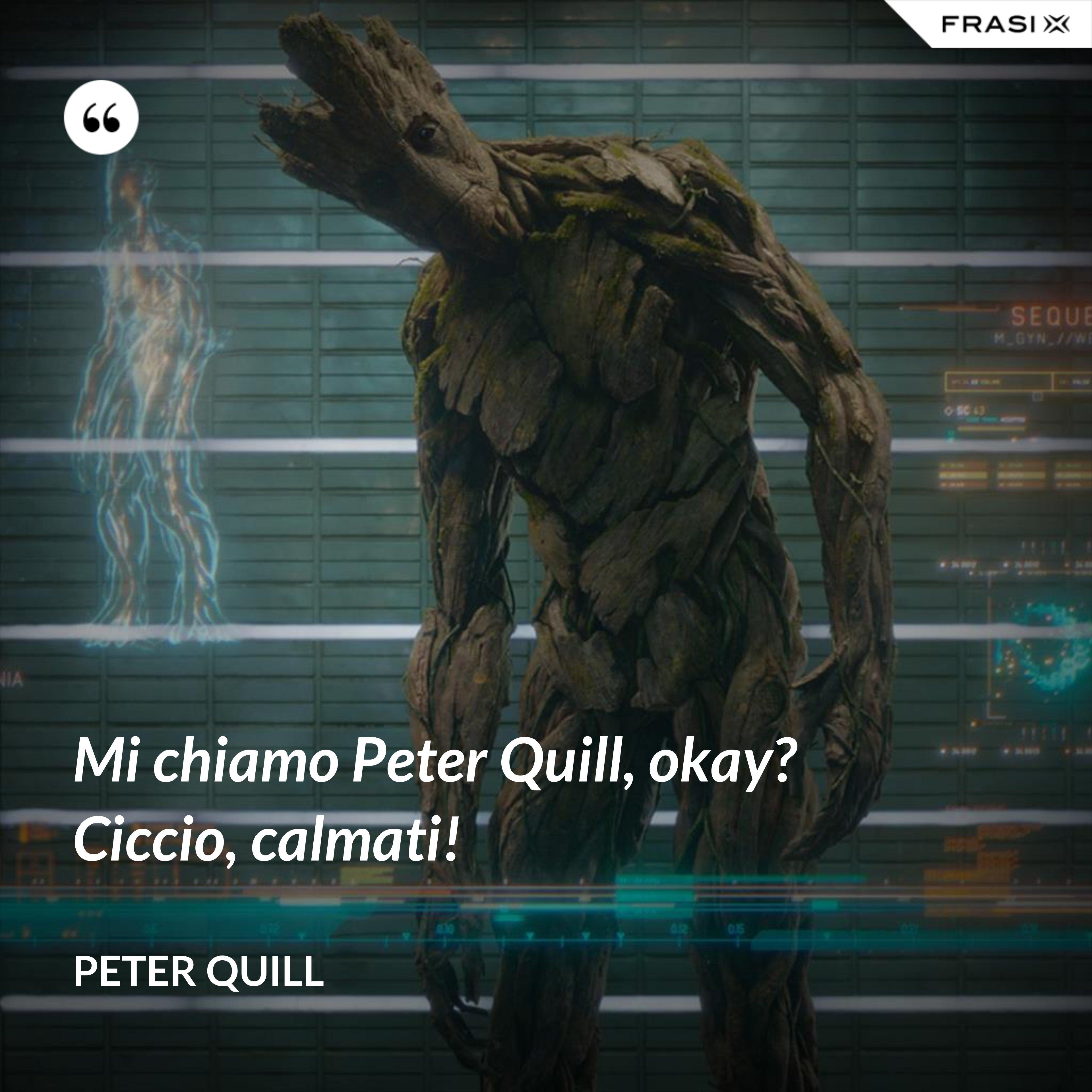 Mi chiamo Peter Quill, okay? Ciccio, calmati! - Peter Quill