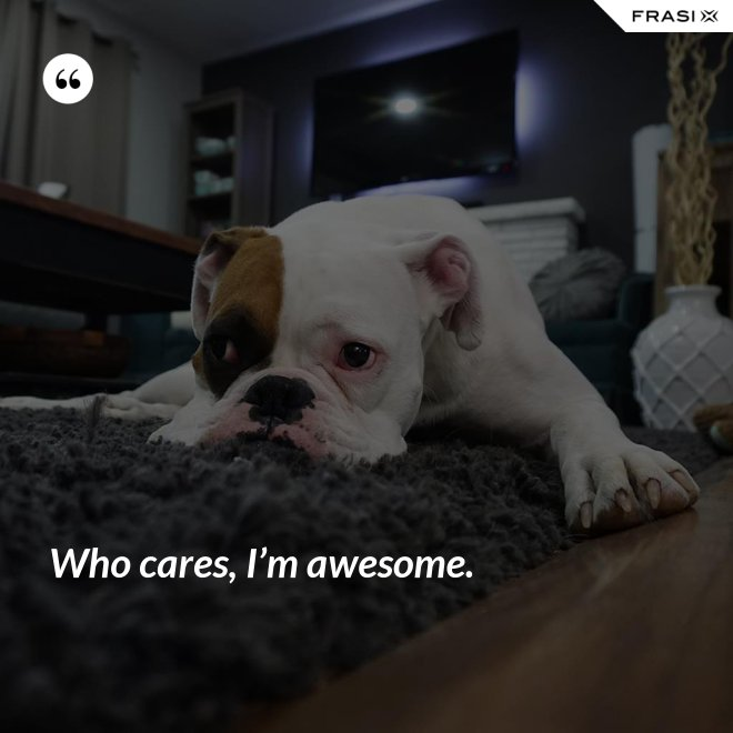 Who cares, I'm awesome. - Anonimo