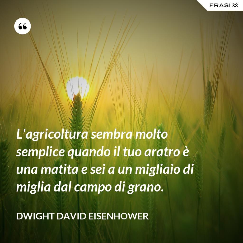 L'agricoltura sembra molto semplice quando il tuo aratro è una matita e sei a un migliaio di miglia dal campo di grano. - Dwight David Eisenhower