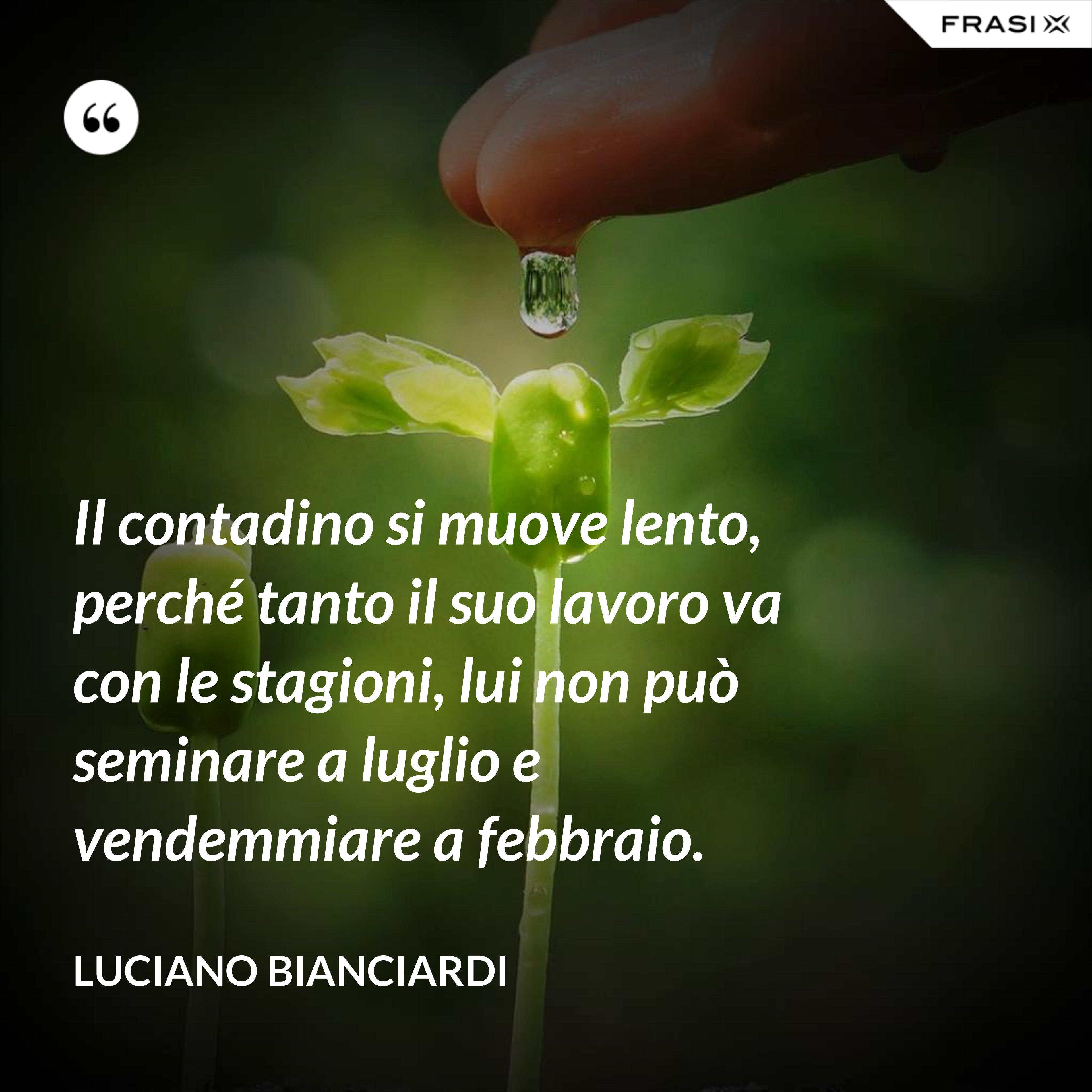 Il contadino si muove lento, perché tanto il suo lavoro va con le stagioni, lui non può seminare a luglio e vendemmiare a febbraio. - Luciano Bianciardi