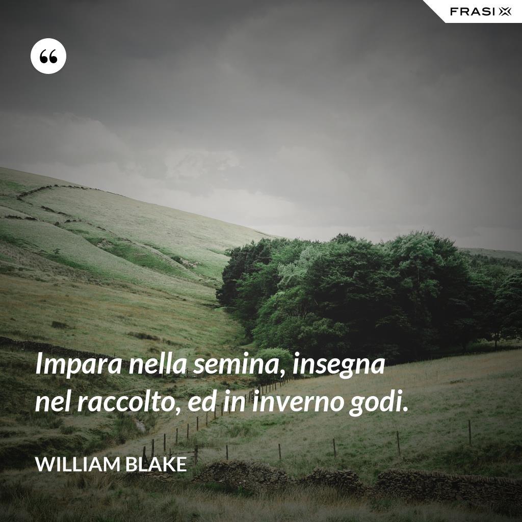 Impara nella semina, insegna nel raccolto, ed in inverno godi. - William Blake