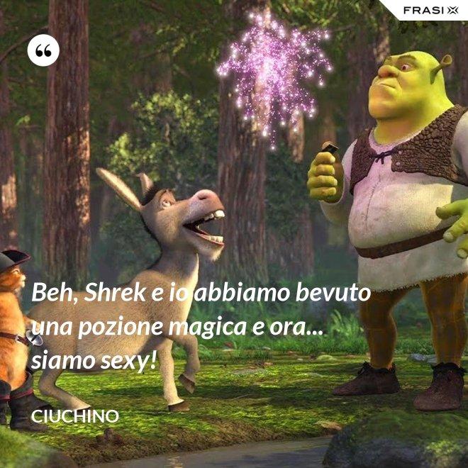 Beh, Shrek e io abbiamo bevuto una pozione magica e ora... siamo sexy! - Ciuchino