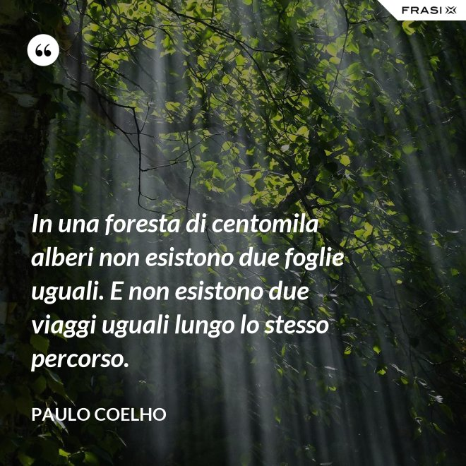 In una foresta di centomila alberi non esistono due foglie uguali. E non esistono due viaggi uguali lungo lo stesso percorso. - Paulo Coelho