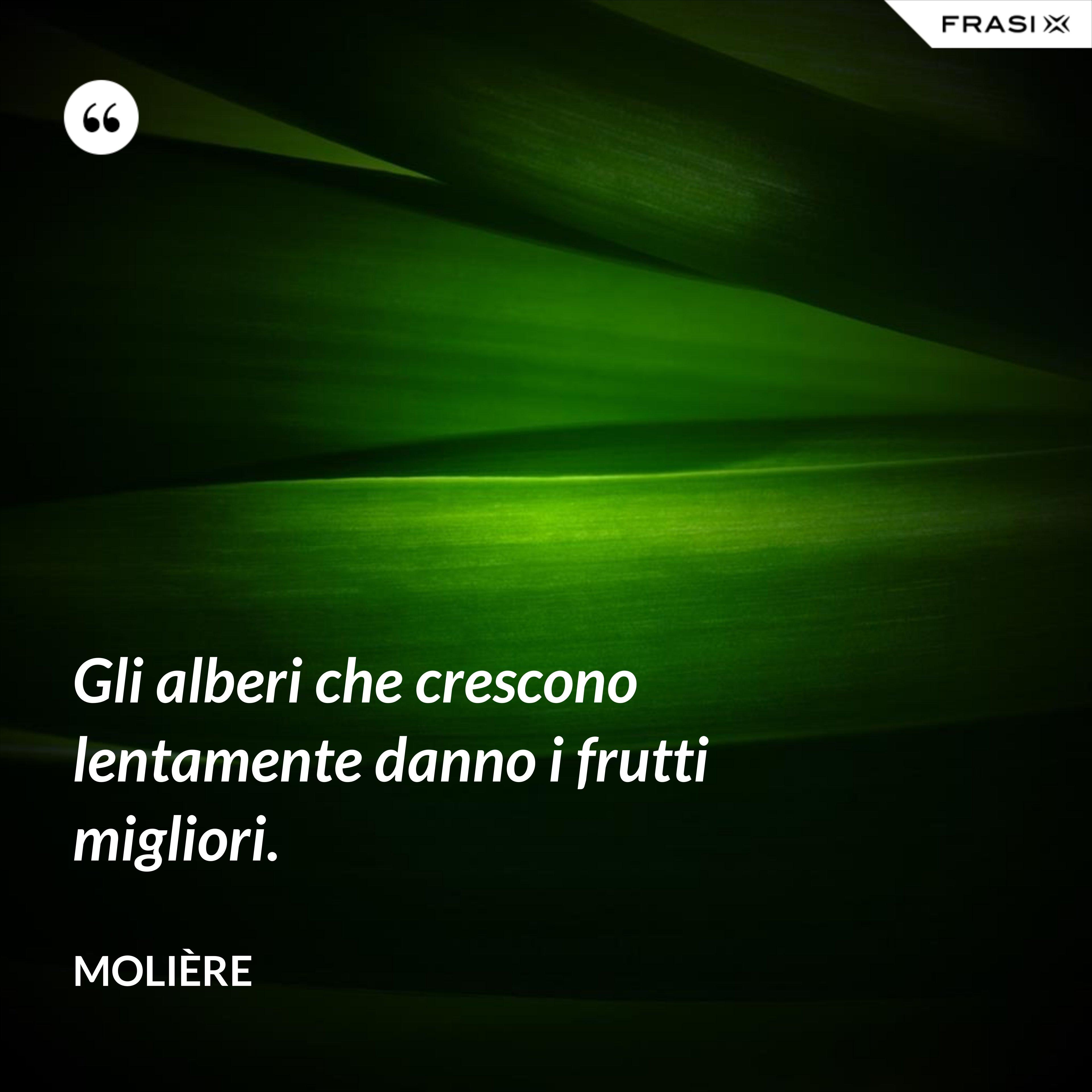 Gli alberi che crescono lentamente danno i frutti migliori. - Molière
