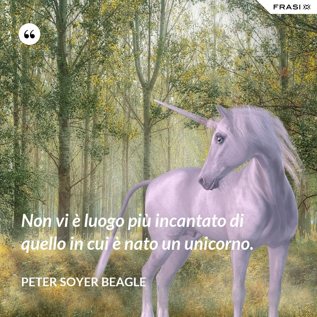 Non vi è luogo più incantato di quello in cui è nato un unicorno. - Peter Soyer Beagle