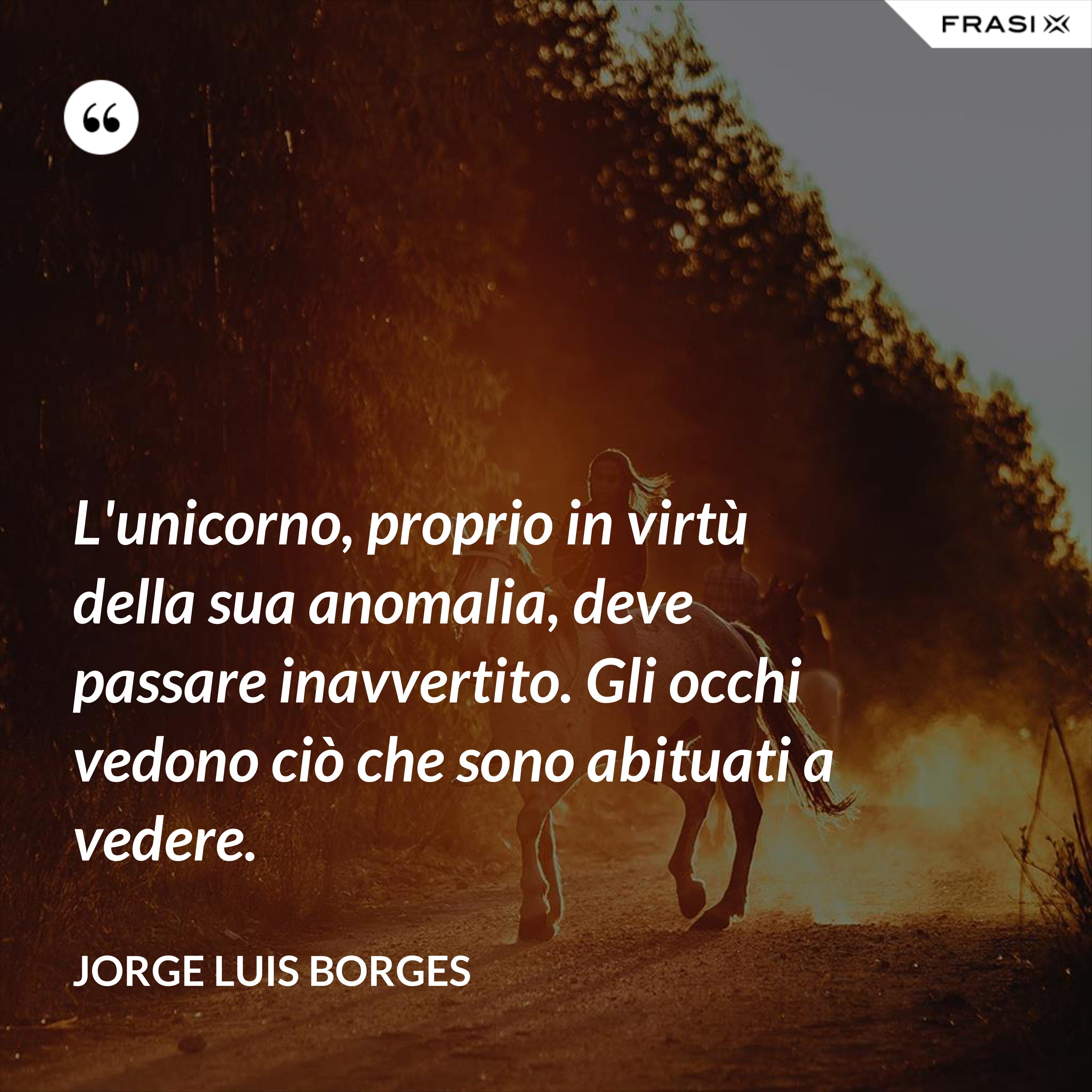 L'unicorno, proprio in virtù della sua anomalia, deve passare inavvertito. Gli occhi vedono ciò che sono abituati a vedere. - Jorge Luis Borges