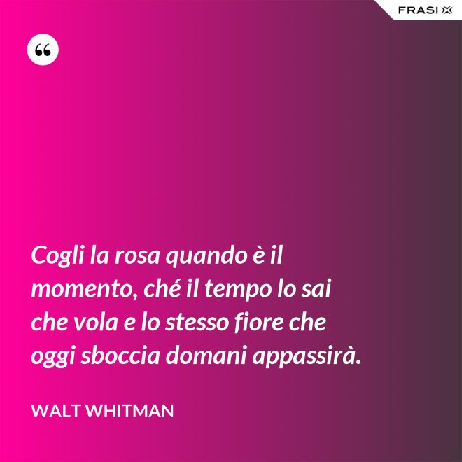 Cogli la rosa quando è il momento, ché il tempo lo sai che vola e lo stesso fiore che oggi sboccia domani appassirà. - Walt Whitman
