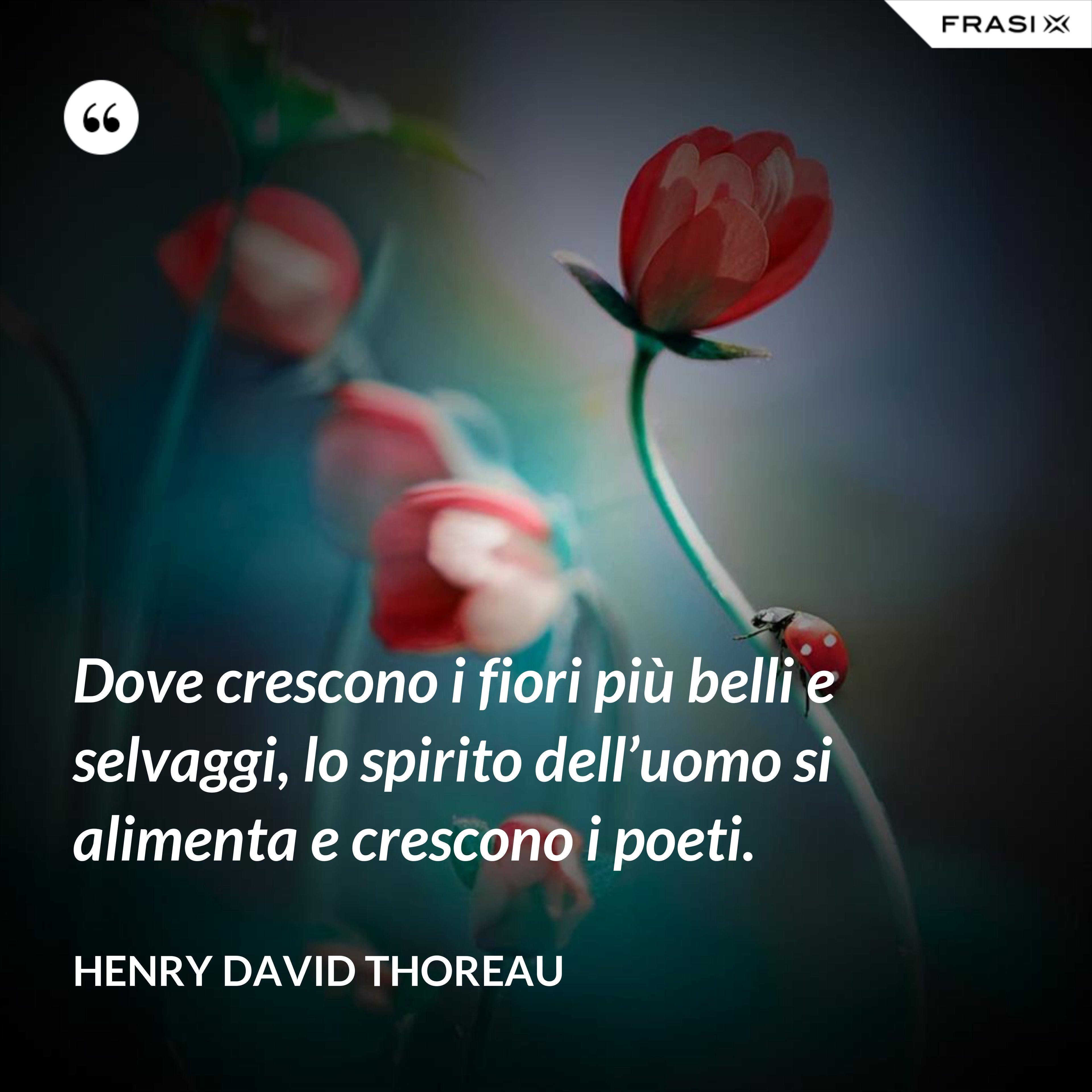 Dove crescono i fiori più belli e selvaggi, lo spirito dell'uomo si alimenta e crescono i poeti. - Henry David Thoreau