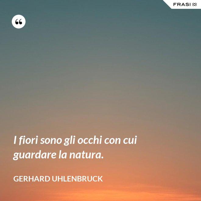 I fiori sono gli occhi con cui guardare la natura. - Gerhard Uhlenbruck
