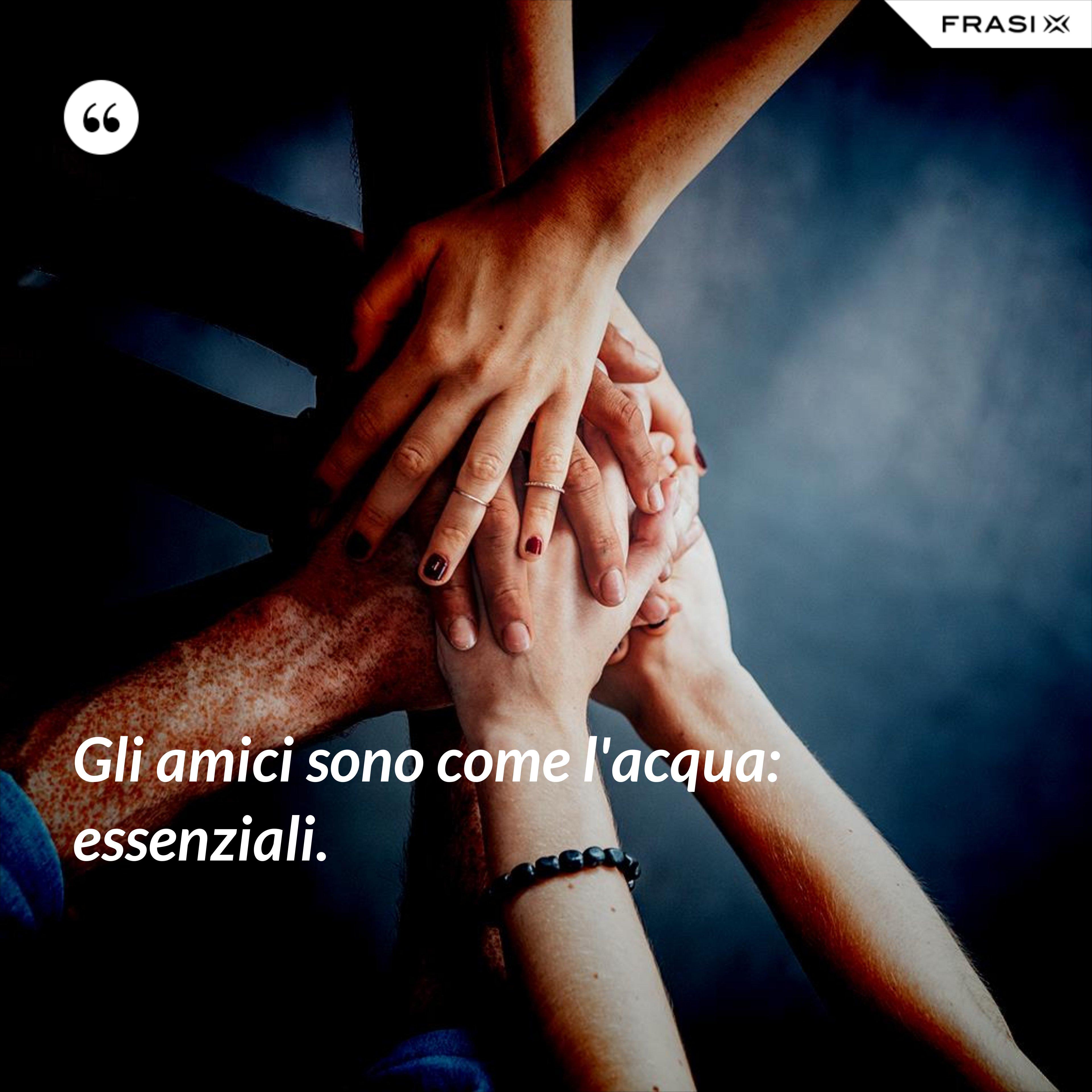 Gli amici sono come l'acqua: essenziali. - Anonimo