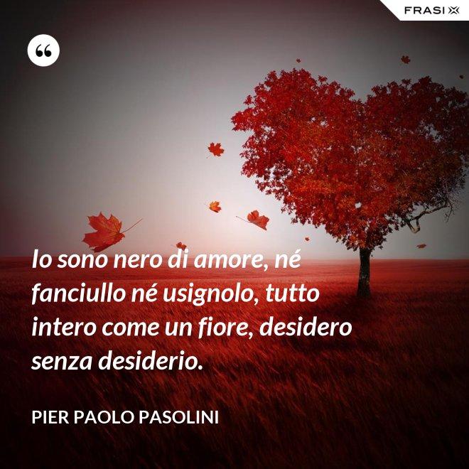 Io sono nero di amore, né fanciullo né usignolo, tutto intero come un fiore, desidero senza desiderio. - Pier Paolo Pasolini