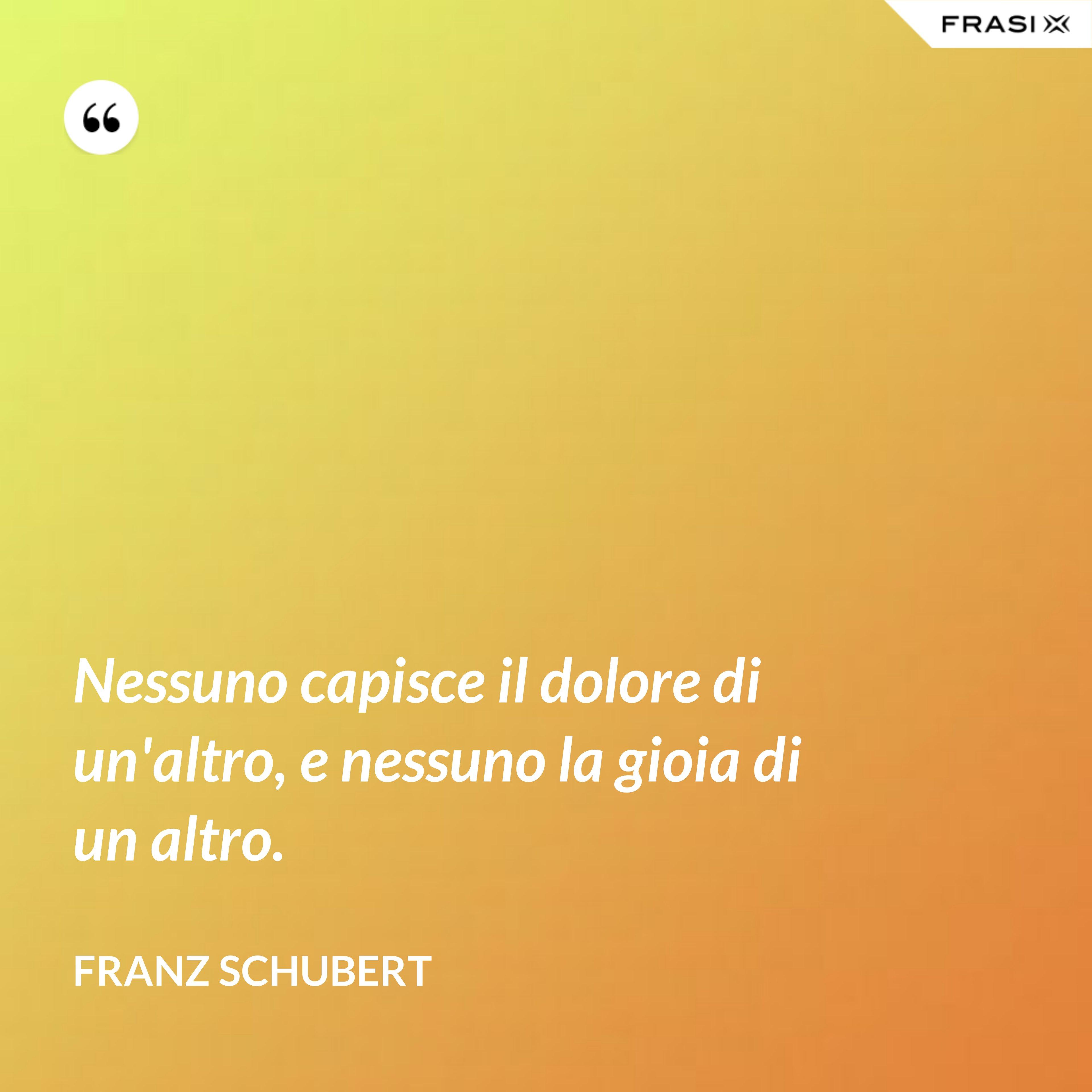 Nessuno capisce il dolore di un'altro, e nessuno la gioia di un altro. - Franz Schubert