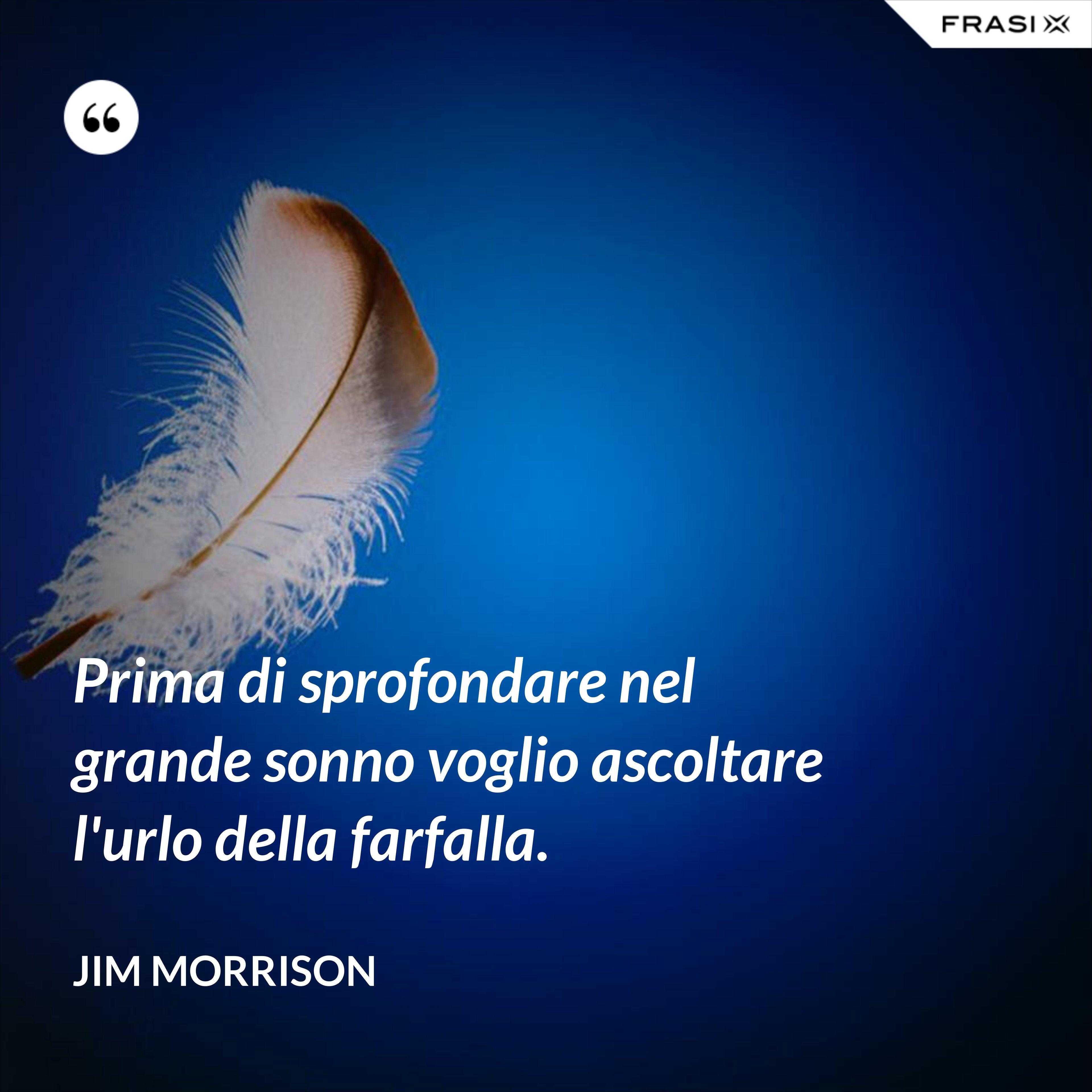 Prima di sprofondare nel grande sonno voglio ascoltare l'urlo della farfalla. - Jim Morrison