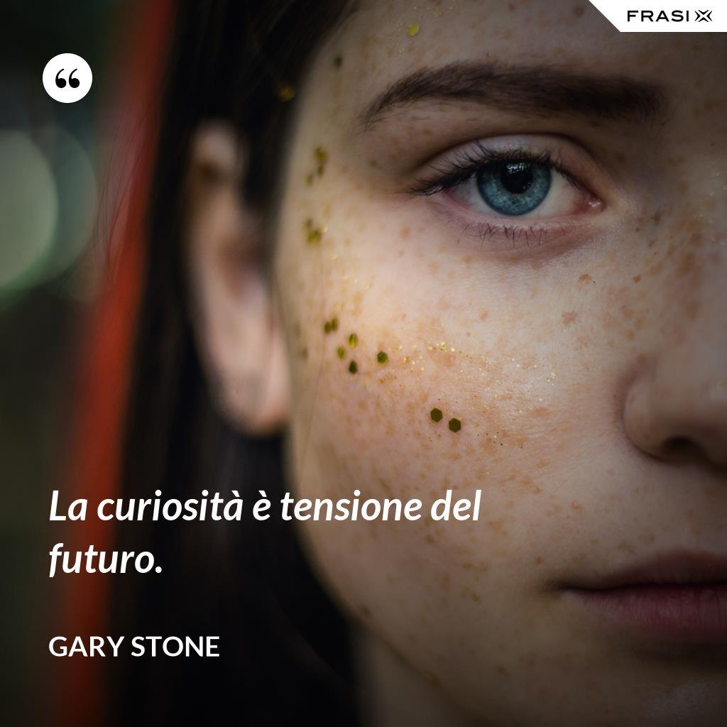 La curiosità è tensione del futuro. - Gary Stone