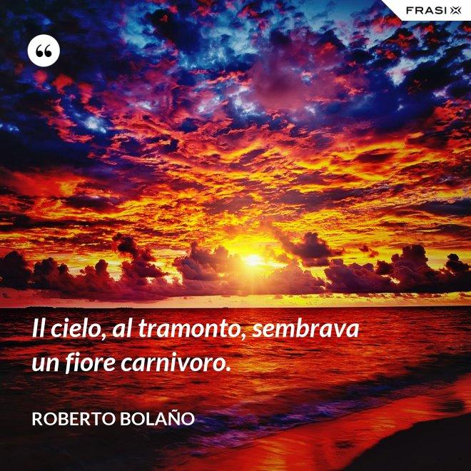 Il cielo, al tramonto, sembrava un fiore carnivoro. - Roberto Bolaño