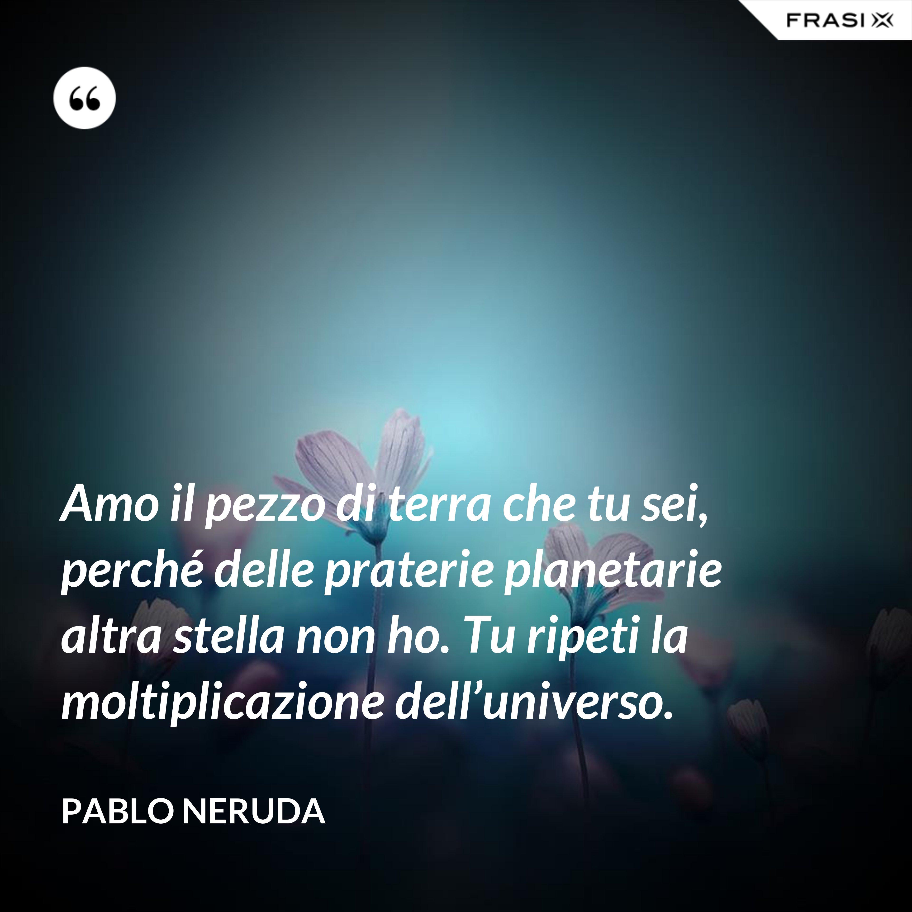 Amo il pezzo di terra che tu sei, perché delle praterie planetarie altra stella non ho. Tu ripeti la moltiplicazione dell'universo. - Pablo Neruda