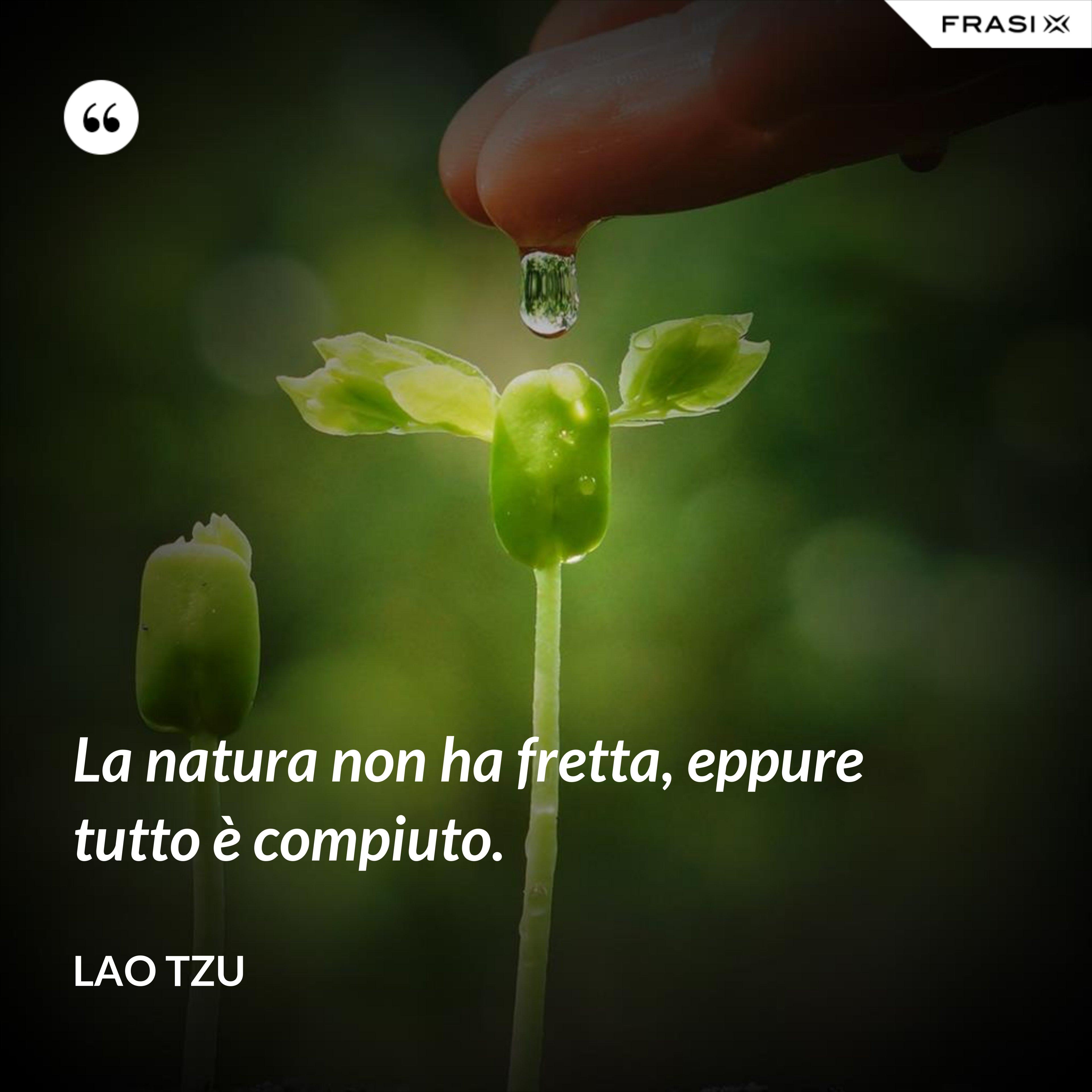La natura non ha fretta, eppure tutto è compiuto. - Lao Tzu