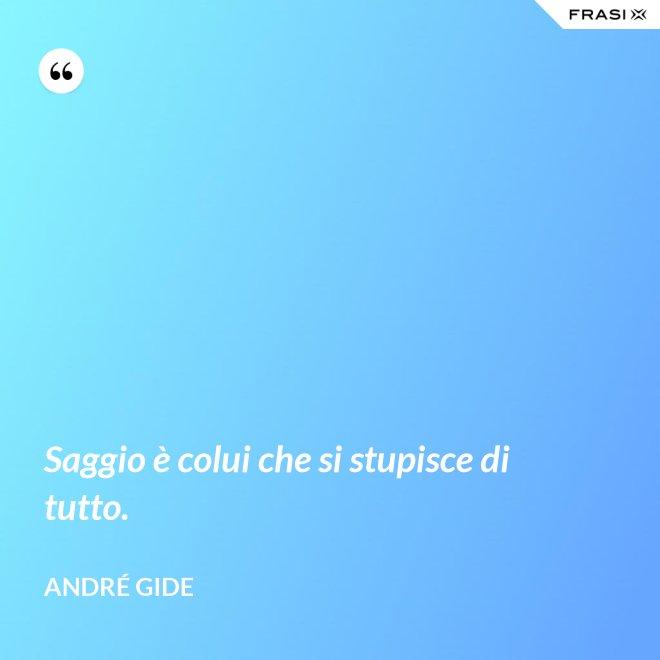 Saggio è colui che si stupisce di tutto. - André Gide