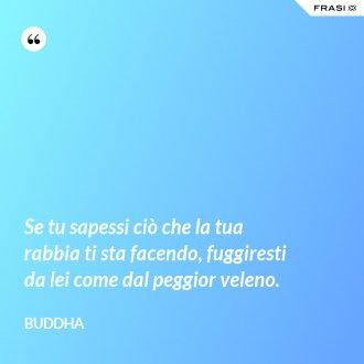 Se tu sapessi ciò che la tua rabbia ti sta facendo, fuggiresti da lei come dal peggior veleno. - Buddha