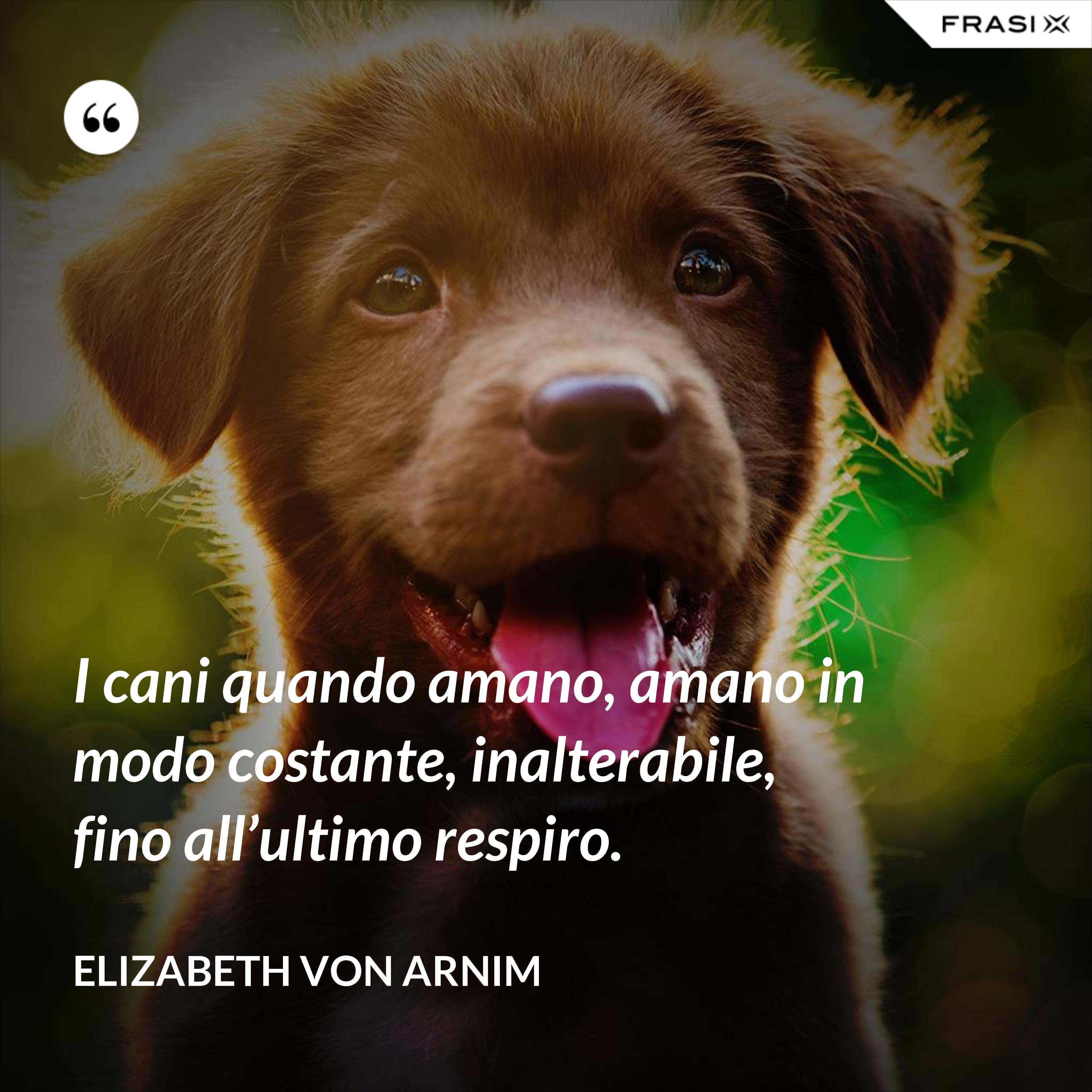 I cani quando amano, amano in modo costante, inalterabile, fino all'ultimo respiro. - Elizabeth von Arnim